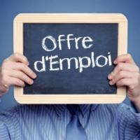 Offre d'emploi Concepteur Vendeur (F/H)